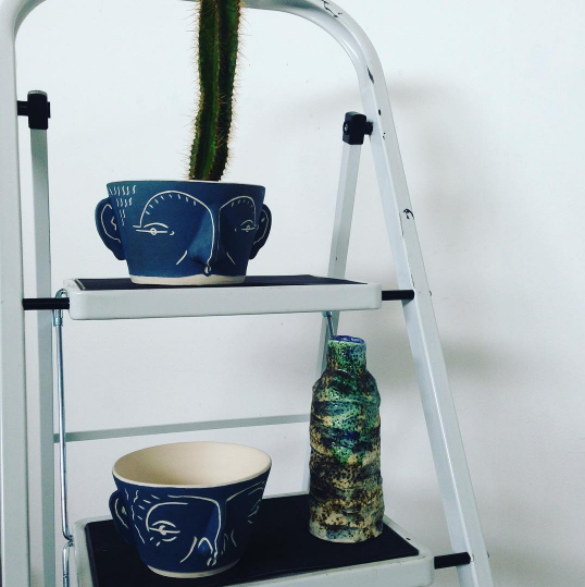A photo of ceramic art by Mary Watson. Depicted are a 2 ceramic bowls, painted navy blue with white facial features. They are arranged on a stepladder, alongside a plant pot. In one of the bowls is a cactus.